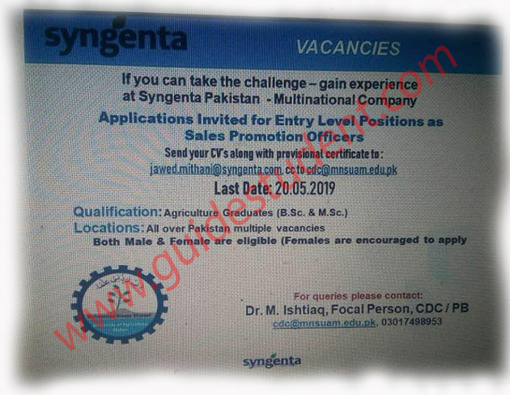 Syngenta Jobs 2019 | guidestudent